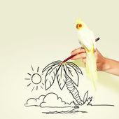 Parrot sitting on hand — Stock Photo