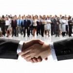 Business handshake — Stock Photo #29044921