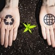 Human hands and ecology symbols — Stock Photo