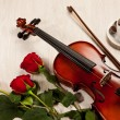 Red roses and a violin — Stock fotografie