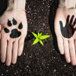 Humhands and ecology symbols — Stock Photo #29419609