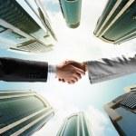 Business handshake — Stock Photo #29536865