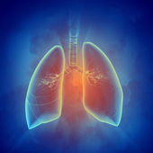 Schematic illustration of human lungs — Stock Photo