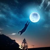 Kočka lov měsíc — Stock fotografie