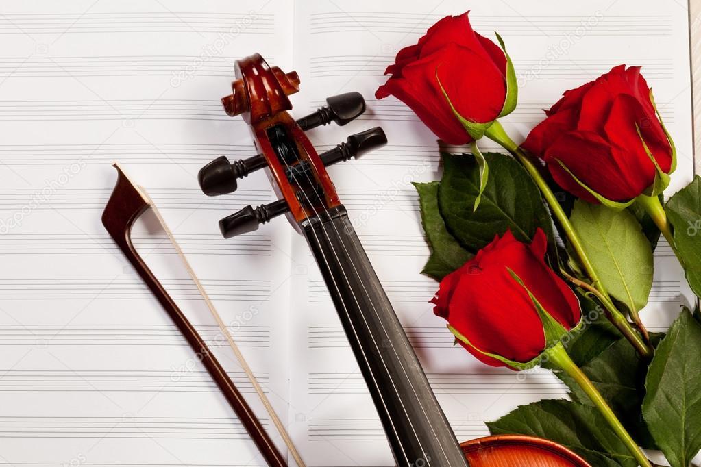 红玫瑰和一把小提琴