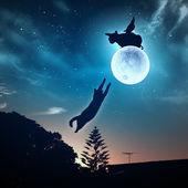 Silhuetas de animais no céu noturno — Foto Stock