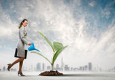 Business woman watering sprout — Stock Photo