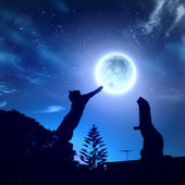 Silhouettes of animals in night sky — Foto Stock