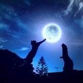 Silhuetter av djur i natthimlen — Stockfoto