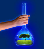 Tree in test tube — Stock Photo