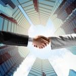 Business handshake — Stock Photo #30507169