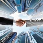 Business handshake — Stock Photo #30507351