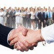 Business handshake — Stock Photo #30508557