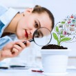 Businesswoman examining sprout — Stock Photo