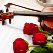Red roses and a violin — Stok fotoğraf