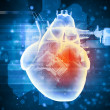 Human heart beats — Stock Photo #30621397