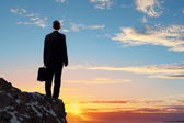 Businessman on top of hill — Stock Photo