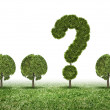 Conceptual image of green plant shaped like question mark — Stock Photo #40683039