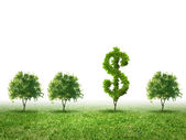 Conceptual image of green plant shaped liked dollar — Stock Photo