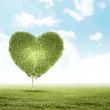 Green grass heart symbol — Stock Photo