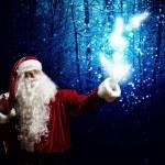 Santa Claus — Stock Photo #41109937