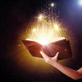 魔法の本 — ストック写真