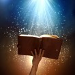 Magic book — Stock Photo #41124507