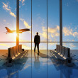 Business travel — Stock Photo #41124995