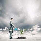 концепция роста — Стоковое фото
