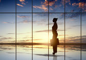 Silhouette of businesswoman — Foto de Stock