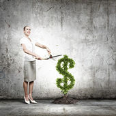 Income concept — Stock Photo