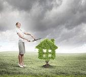 Concepto de zonas verdes — Foto de Stock