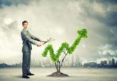 Conceito de crescimento — Foto Stock