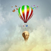 Flying elephant — Stock Photo