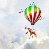 Flying giraffe — Stock Photo