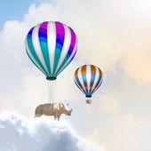 Flying rhino — Stock Photo