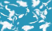White feathers — Stock Photo
