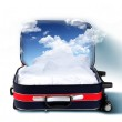 Red suitcase with snowy mountains inside — Stock Photo #8432499