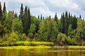 Paesaggio siberiano — Foto Stock