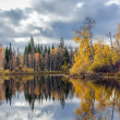 Autumn landscape with the river — Stock Photo #14707813