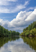 Landscape with the river — Stock Photo