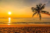 Nice sunset — Stock Photo