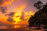 Beautiful tropical sunset — Stock fotografie