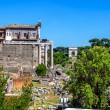 The ruins of the Roman Forum in Rome — Stock Photo