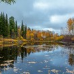 Autumn in Siberia — Stock Photo #34847459