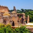 The ruins of the Baths of Caracalla. (Thermae Antoninianae) — Stock Photo
