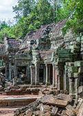 The architecture of the ancient temple of Ta Prohm in Cambodia — Stock Photo