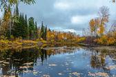 Autumn in Siberia — Stock Photo