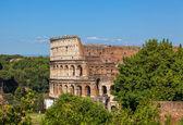 Ancient Roman Colosseum — Stock Photo