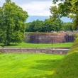 Medieval fortress wall in the Italian town of Lucca — Stock Photo #49296637